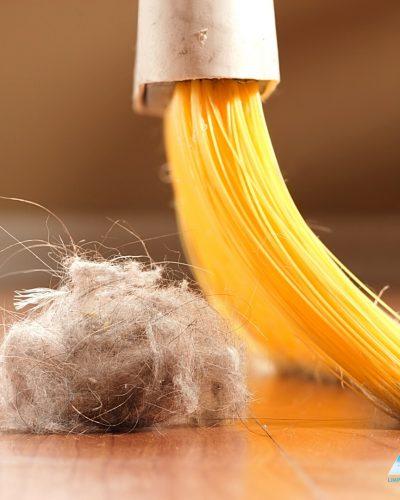 3 consejos para eliminar fácil las pelusas